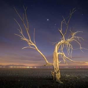 Moby - The Lonely Night Lyrics | Musixmatch