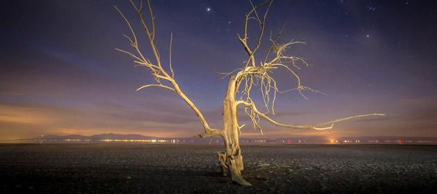 Moby - The Lonely Night Lyrics | MetroLyrics