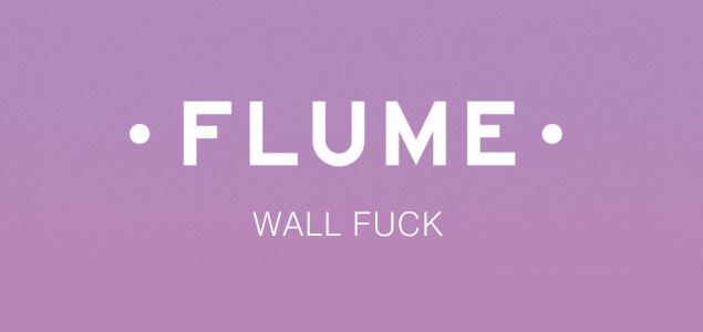 """Descarga gratis la nueva canción de Flume """"Wall Fuck"""""""