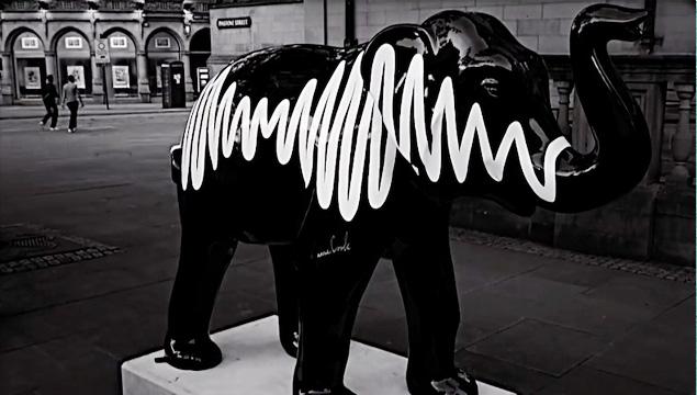 arctic-monkeys-elephant